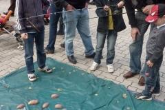 krumplipeca